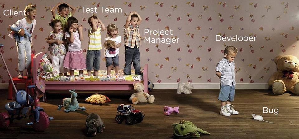 Software Devlopment !