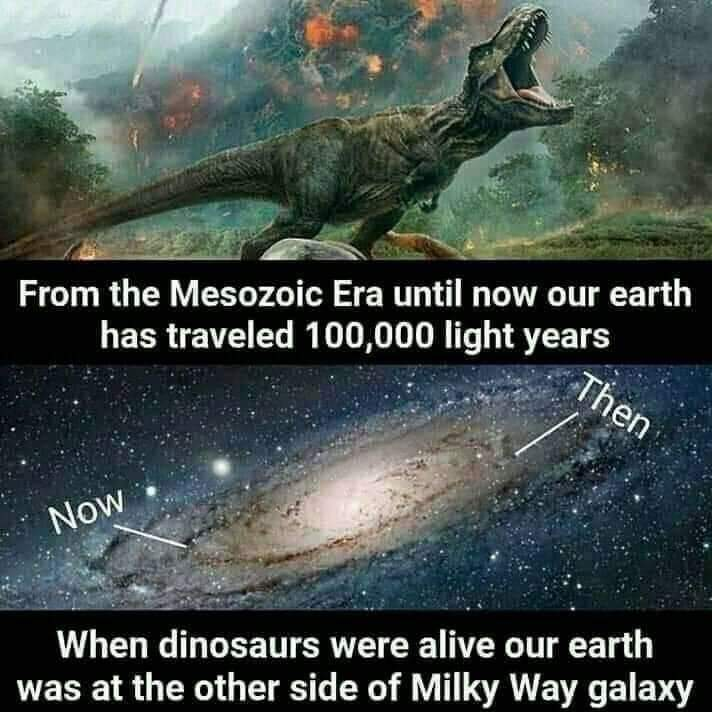 Fun facts which will amuse you
