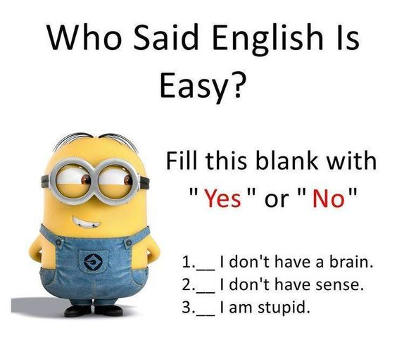 question_answer_in_yes_or_no