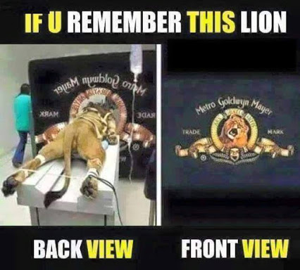 MGM Lionmaking
