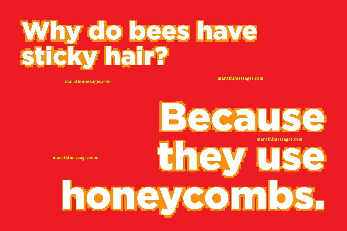 Why bees have sticky